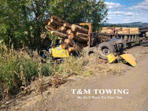 tow - grabbing logs